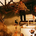 Rigging Kermit and Piggy during the filming of Muppet Treasure Island.